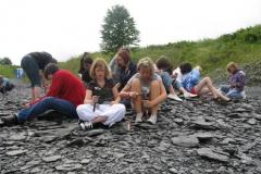 Fossiliensuche
