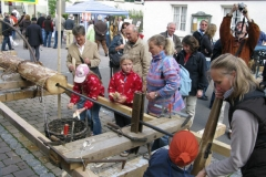 Tag des Schwäbischen Waldes 2008 17